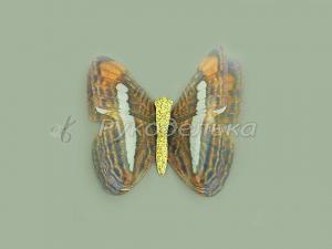 Бабочка шифоновая 4,5см №52.